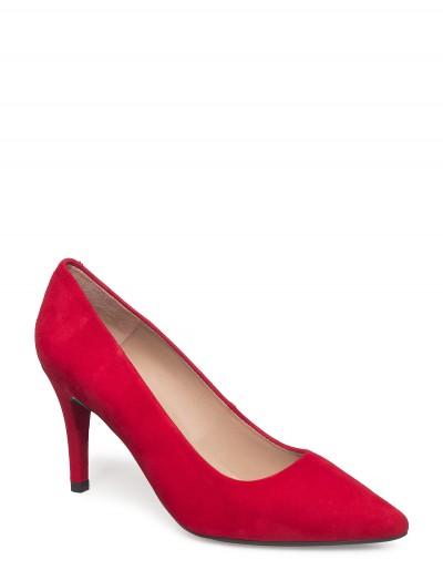 Sapato TOLA CHILI